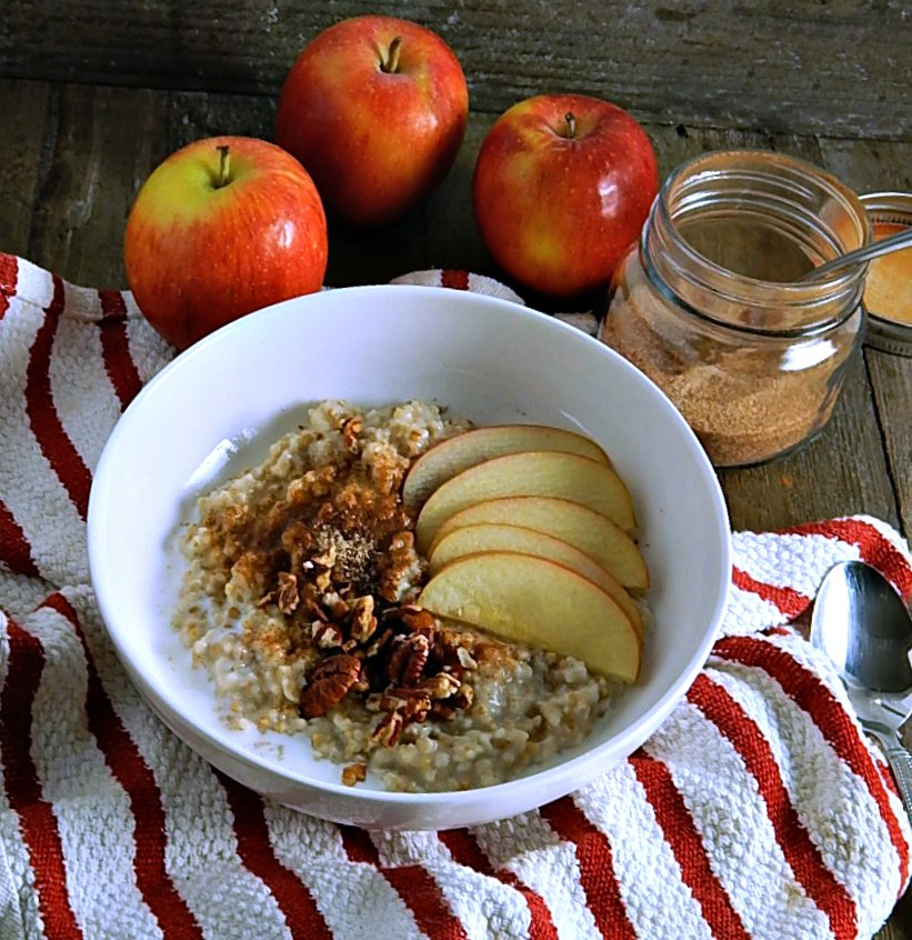 Best Instant Pot Steel Cut Oatmeal