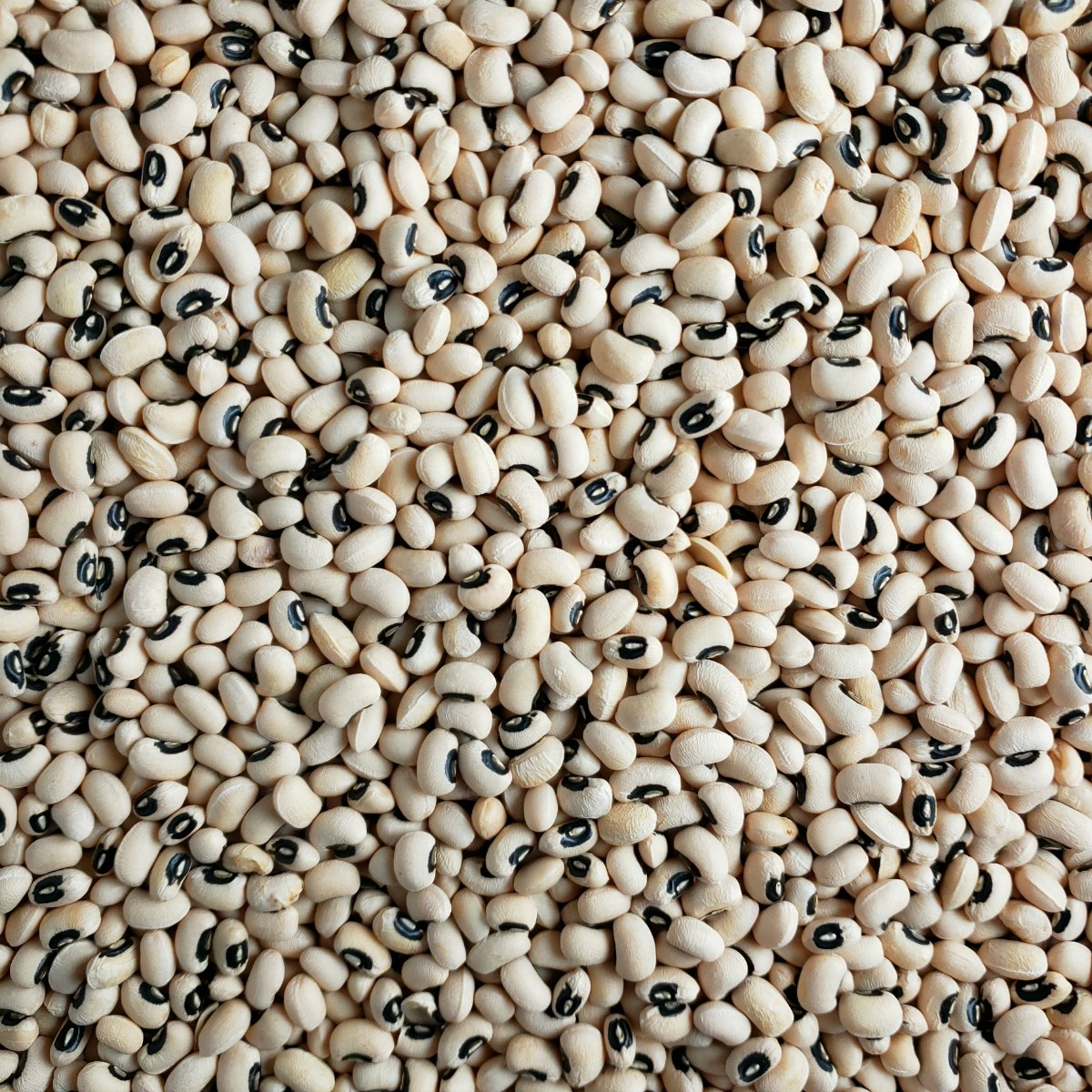 What to Know about Black-Eyed Peas